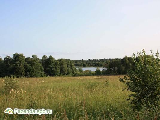 Коттеджный поселок  Заполье, Лужский район.