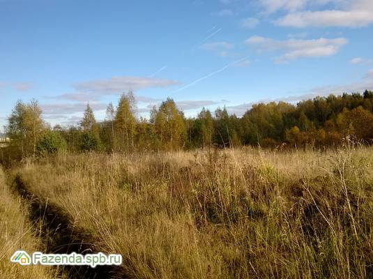 Коттеджный поселок  Порожки-Петровское, Ломоносовский район.