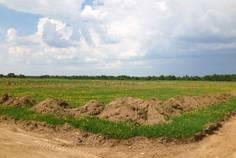 Коттеджный поселок Раздолье от компании Гектар