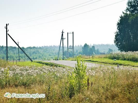 Коттеджный поселок  Новые Ольшаники, Выборгский район.