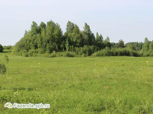 Коттеджный поселок  Королек, Ломоносовский район.