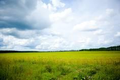 Рядом с Лесной Уют расположен Коттеджный поселок  Сокол 2