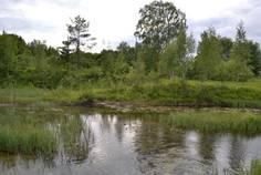 Рядом с Ломоносовский расположен Коттеджный поселок  Михайловские высоты