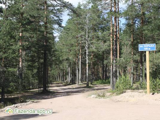 Коттеджный поселок  Марьин парк, Выборгский район.