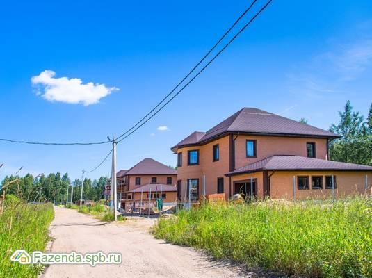 Коттеджный поселок  Рыжики, Всеволожский район. Актуальное фото.