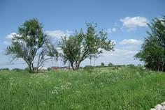 Рядом с Алакюля-1 расположен Коттеджный поселок  Алакюля