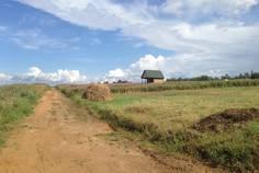 Рядом с Привалово расположен Коттеджный поселок  Карпаты