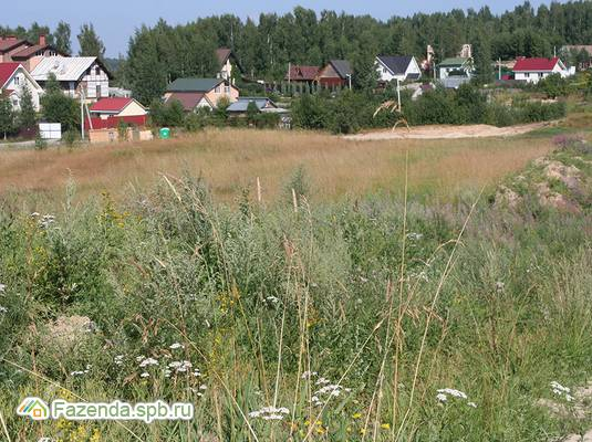 Коттеджный поселок  Тавры, Всеволожский район. Актуальное фото.