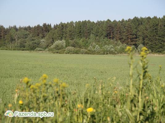 Коттеджный поселок  Лесной Уют, Гатчинский район.