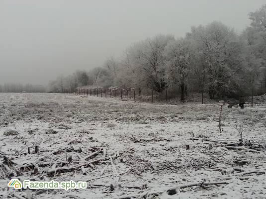 Коттеджный поселок  Ленинская Слобода, Выборгский район.