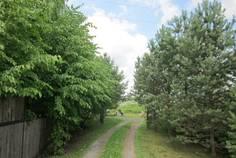 Рядом с Дача 51 расположен Коттеджный поселок  Белые Росы
