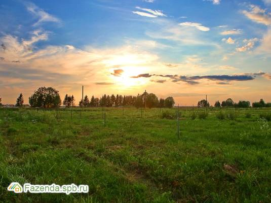 Коттеджный поселок  Калитино, Ломоносовский район. Актуальное фото.