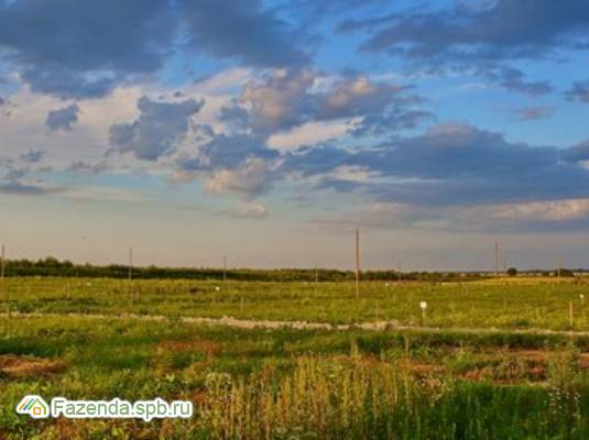 Коттеджный поселок  Калитино, Ломоносовский район.