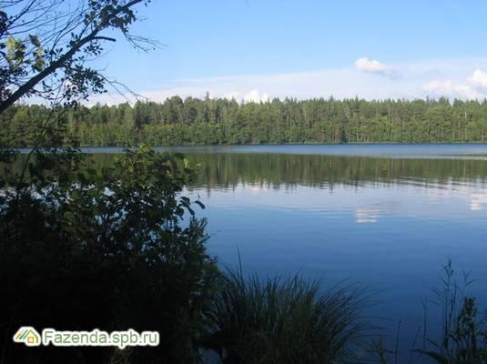 Коттеджный поселок  Старорусское, Выборгский район.