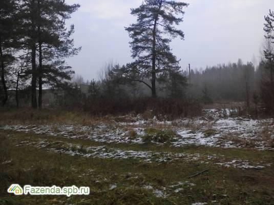 Коттеджный поселок  Борисова Грива, Всеволожский район.