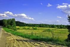 Рядом с Луговое расположен Коттеджный поселок  Усадьба Луговая