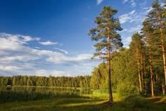 Рядом с Гранит расположен Коттеджный поселок  Агалатово-3