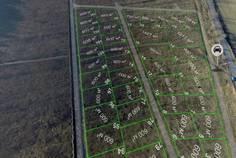 Коттеджный поселок Лесная Привилегия от компании Северная Долина
