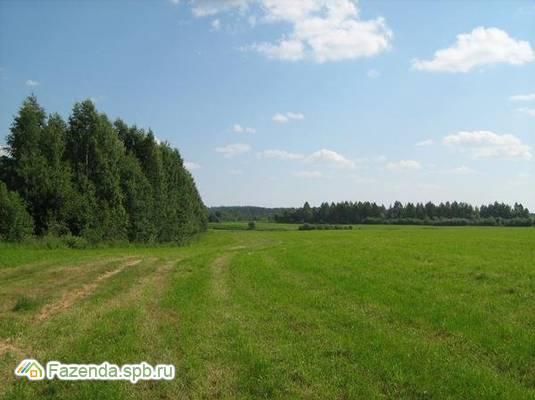 Коттеджный поселок  Терра-Порошкино, Всеволожский район. Актуальное фото.