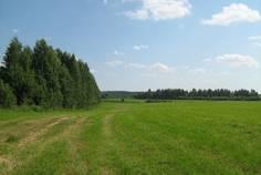 Рядом с Opushka расположен Коттеджный поселок  Терра-Порошкино
