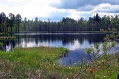 Рядом с Гусиное расположен Коттеджный поселок  Гусиное озеро