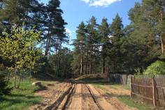 Коттеджный поселок Большие Крупели от компании ДНП ПРЕОБРАЖЕНСКОЕ