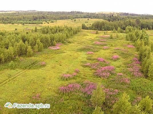 Коттеджный поселок  Любимые Просторы, Тосненский район.