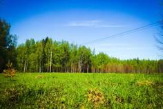 Коттеджный поселок Белозерье от компании ДНП Белозерье