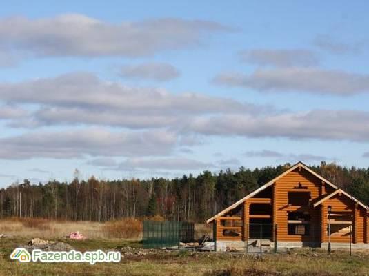 Коттеджный поселок  Портосики, Всеволожский район. Актуальное фото.