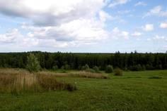 Рядом с Перепёлкино расположен Коттеджный поселок  Восток 14