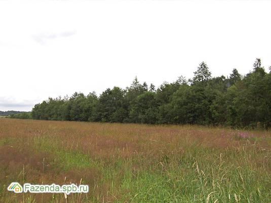 Коттеджный поселок  Вишневское озеро, Выборгский район.