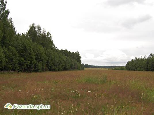 Коттеджный поселок  Вишневское озеро, Выборгский район. Актуальное фото.