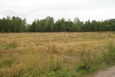 Рядом с Смольный расположен Коттеджный поселок  Терра-Выборгское