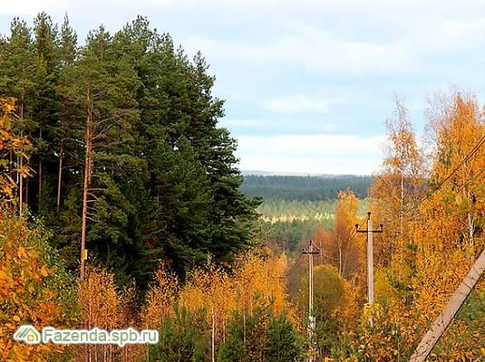 Коттеджный поселок  Лебяжий хутор, Выборгский район.