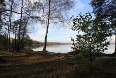 Рядом с Земляничная поляна расположен Коттеджный поселок  Спутник