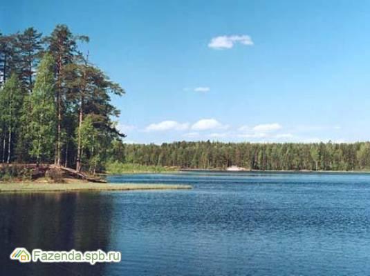 Коттеджный поселок  Лесной Хутор, Всеволожский район. Актуальное фото.