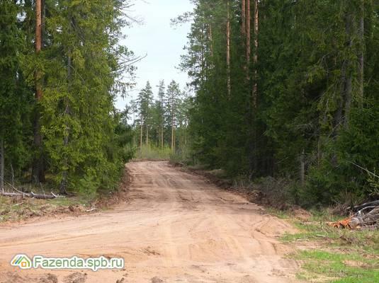 Коттеджный поселок  Карельский бриз, Выборгский район.