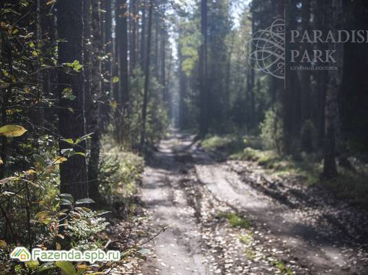 Коттеджный поселок  Paradise Park, Выборгский район. Актуальное фото.