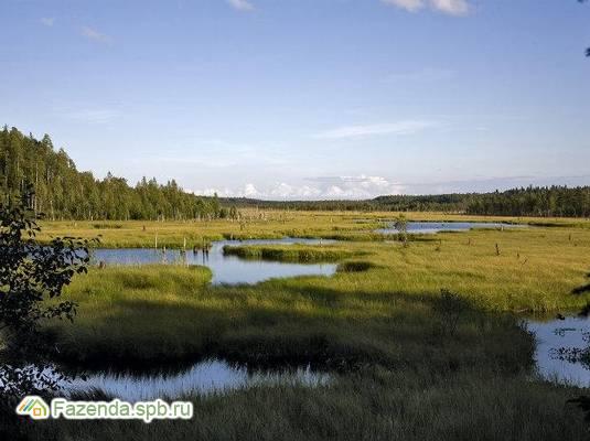 Коттеджный поселок  Скандинавский парк, Всеволожский район.