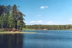 Рядом с Смольный расположен Коттеджный поселок  Скандинавский парк