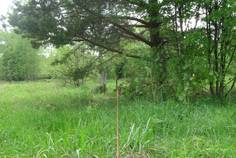 Коттеджный поселок Гусиное от компании ДНП Гусиное