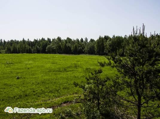 Коттеджный поселок  Всеволожский, Всеволожский район.