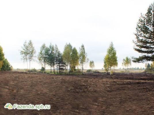 Коттеджный поселок  Ингрия, Ломоносовский район.