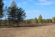 Рядом с Шале-парк Suрerbia расположен Коттеджный поселок  Ингрия