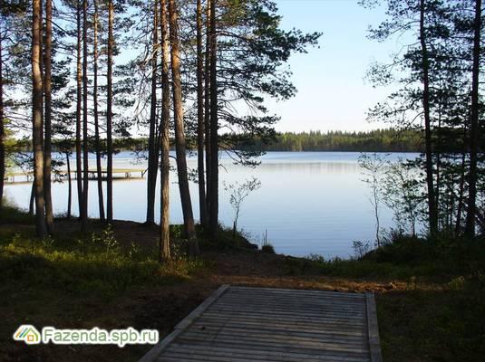 Коттеджный поселок  Ольшаники, Выборгский район.