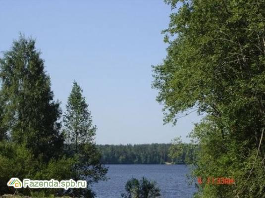 Коттеджный поселок  Ольшаники, Выборгский район. Актуальное фото.