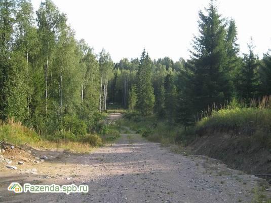 Коттеджный поселок  Журавки, Выборгский район.