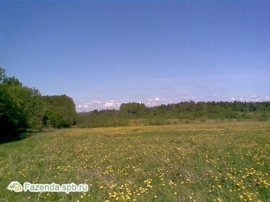Коттеджный поселок  Лебяжье, Выборгский район.