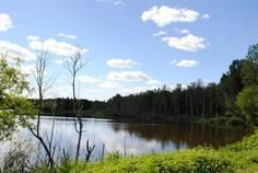 Рядом с Стеклянный ручей расположен Коттеджный поселок  Стеклянный