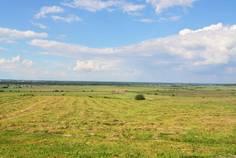Рядом с Аннинские просторы расположен Коттеджный поселок  Тиммолово
